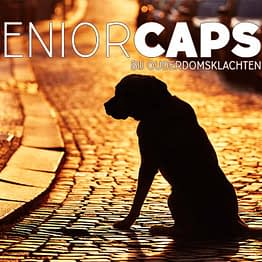 Senior Caps